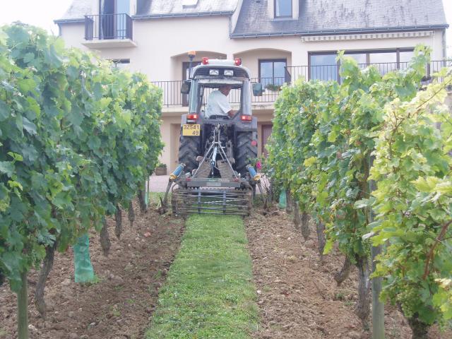 Domaine de la Bessiere - Vigneron indépendant - Saumur-Champigny - Galerie photo : désherbage mécanique