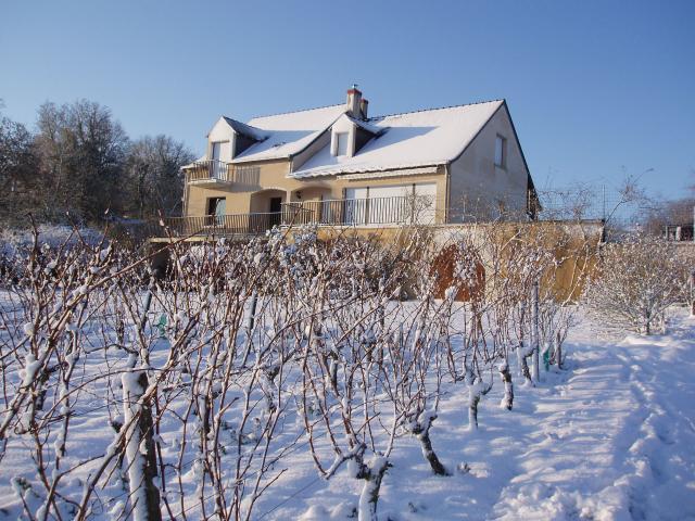 Domaine de la Bessiere - Vigneron indépendant - Saumur-Champigny - Galerie photo : sous la neige