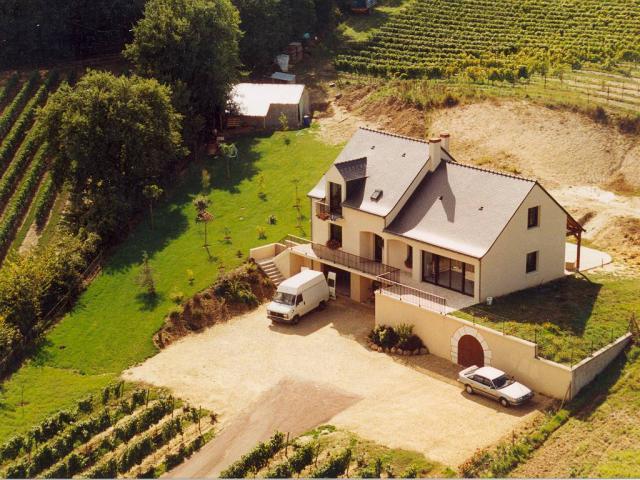 Domaine de la Bessiere - Vigneron indépendant - Saumur-Champigny - Galerie photo : au coeur du Vignoble.